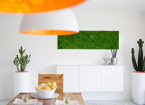 Carefree moss walls and moss pictures for your home, Freund GmbH