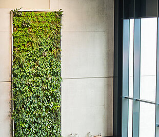 Greener buildings & plant walls