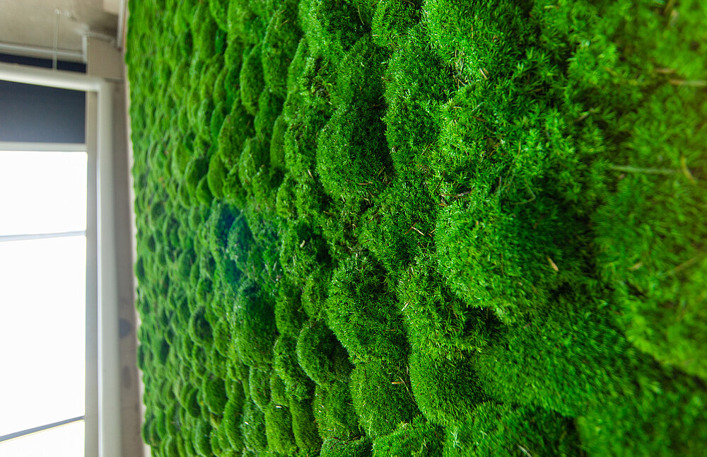 Meeting point under a moss wall: Greenhill installation at the Clinton European headquarters