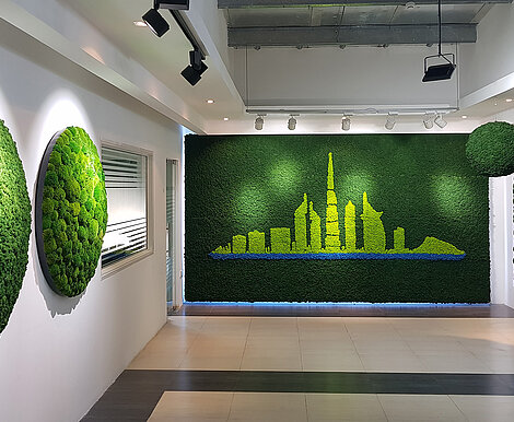 Moss wall in three colours, Evergreen Moss Premium Dubai skyline in Planters Horticulture LLC showroom, UAE
