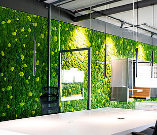 Freund GmbH biophilic design for healthier workplaces, with functionally acoustic moss walls