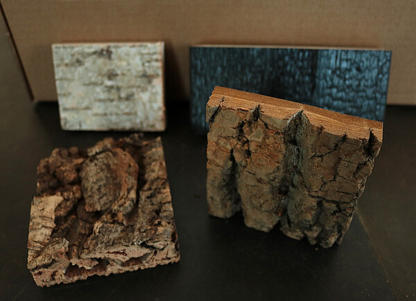 Freund GmbH samples for high quality bark material as interior wall covering