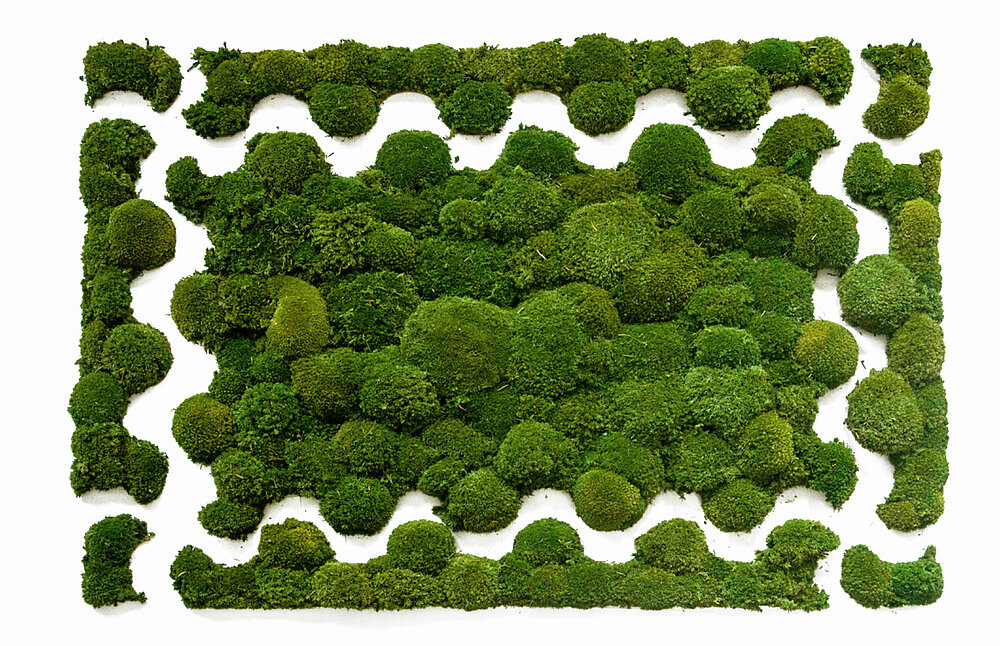 Freund Greenhill moss puzzle in standard format of 4 pieces, for moss walls & moss pictures without transitions