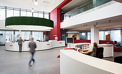 Functionally acoustic lampshades with Evergreen Moss Standard, Sparkasse offices