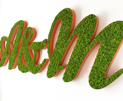 Moss logo of framed moss letters, Freund Evergreen Moss Premium, Ansel & Möllers PR agency, pvc with mosss