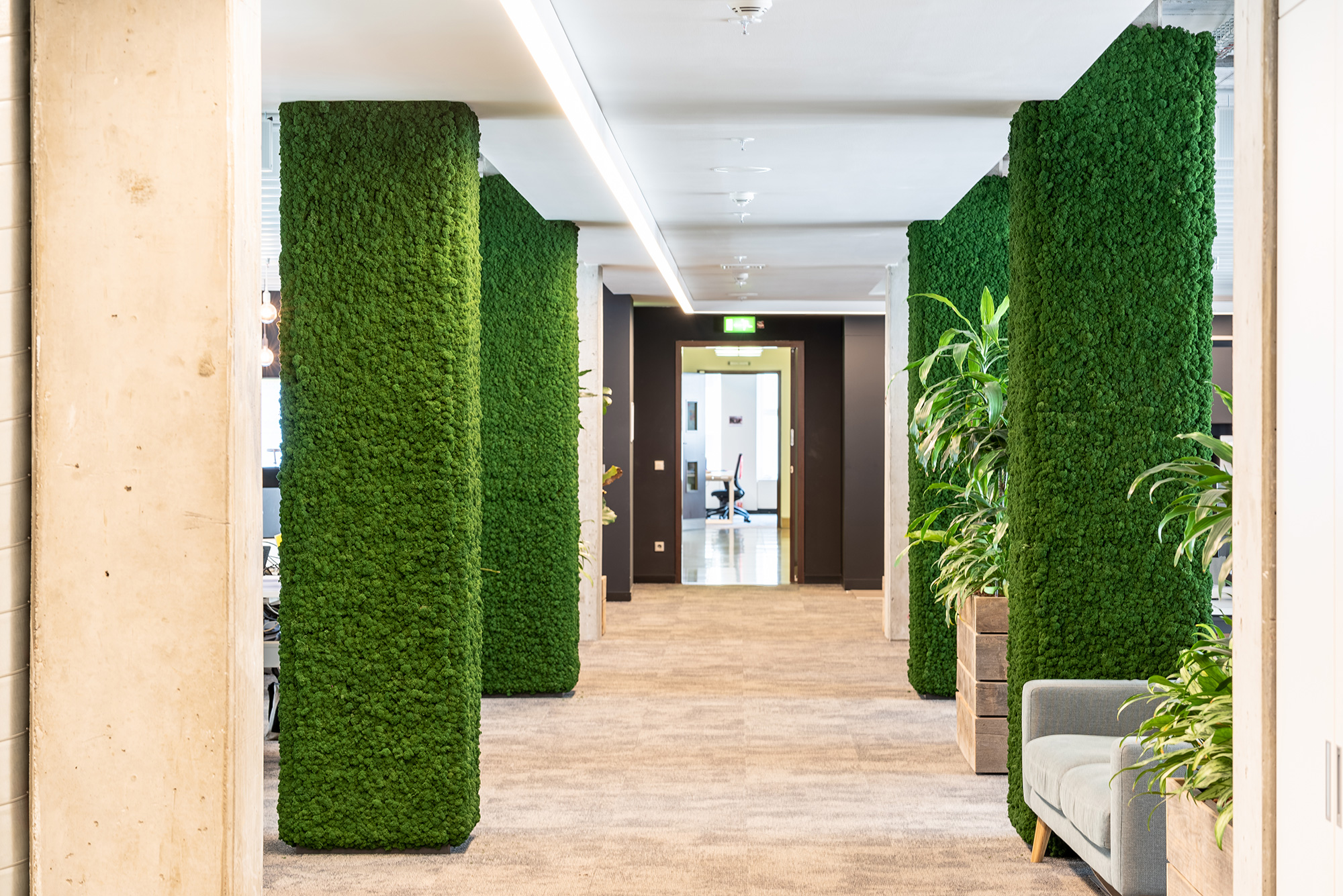 Green office with moss pillars of Evergreen Premium by Freund GmbH