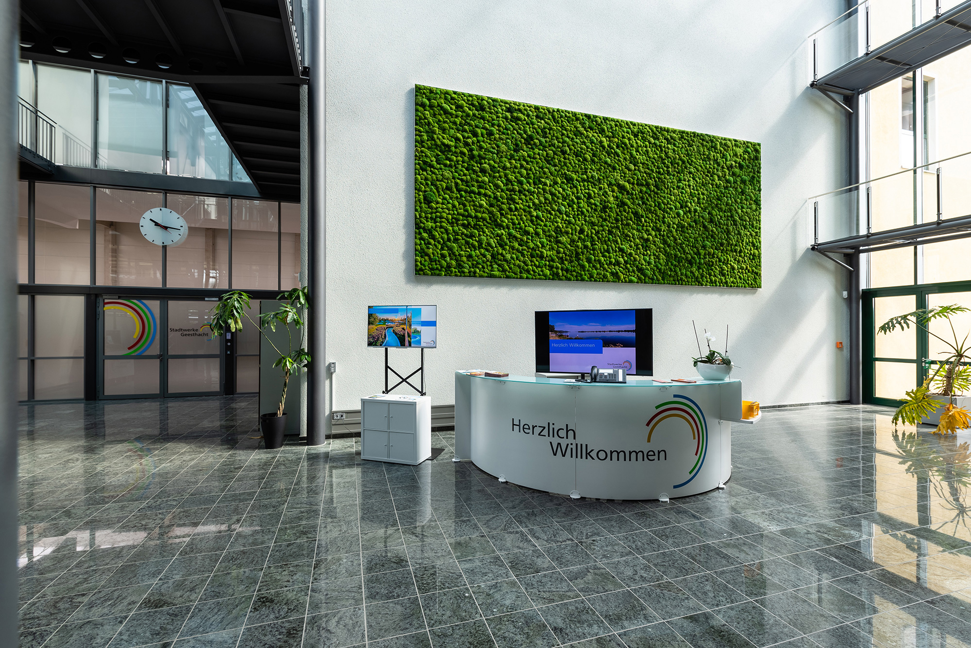 Maintenance-free cushion moss wall decoration, Stadtwerke Geesthacht entrance hall, cushion moss