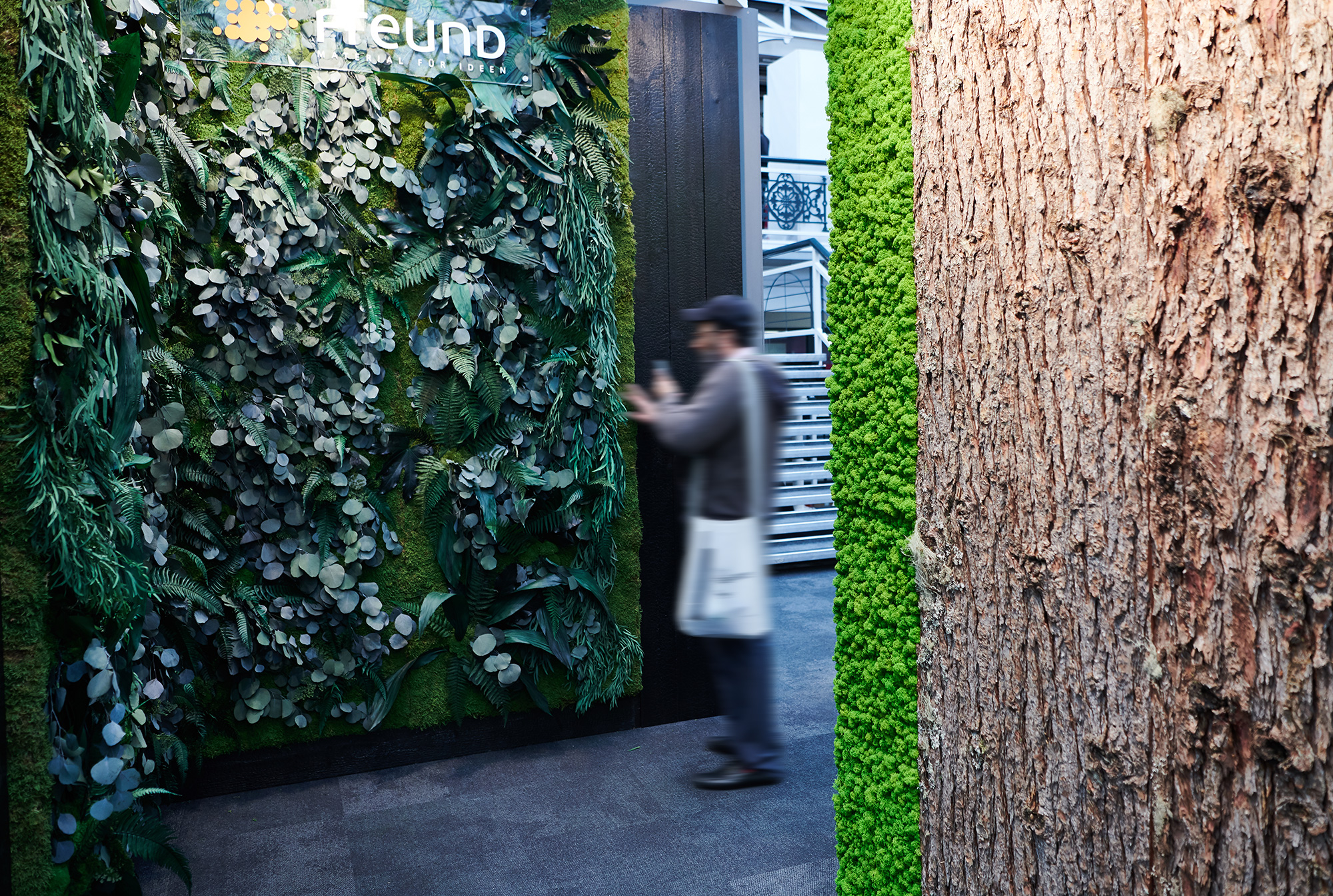 Greenwood Jungle moss wall for own exhibition presence, preserved plant wall, lush plants, jungle aesthetic, London
